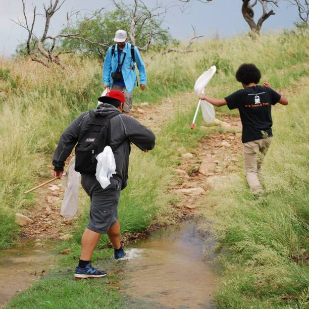 The bug squad on the move after spotting some cool insects. (Photo credit: Melissa Cruz)