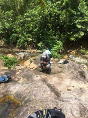 Looking for aquatic insects as well as terrestrial insects is important to get a complete biological survey of an area.