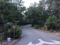 The drive way into the campground was surrounded by some amazing greenery.